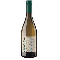 Quanta Terra Grande Reserva 2015 White Wine