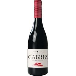 Cabriz Colheita Selecionada 2015 Red Wine