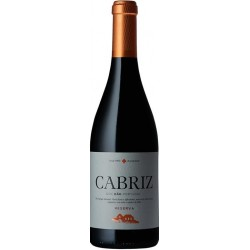 Cabriz Reserva 2013 Red Wine