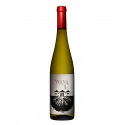 Niepoort Wana Bi Alvarinho Weißwein